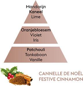 CANNELLE DE NOEL
