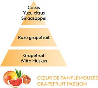 COEUR DE PAMPLEMOUSSE