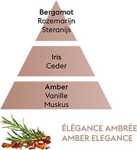 ELEGANCE AMBREE