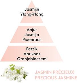 JASMIN PRECIEUX
