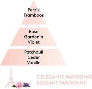 LELEGANTE PARISIENNE