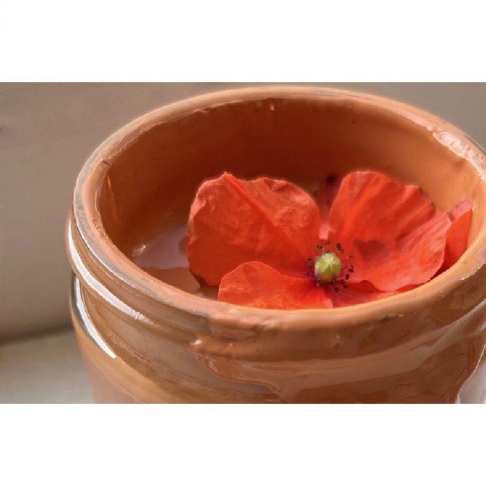 Seasonalities Sample 60ml Flower Pot 2